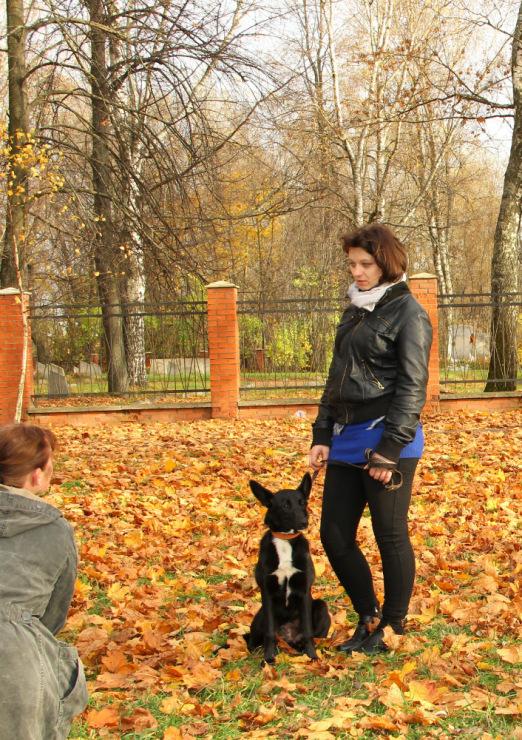 http://data15.gallery.ru/albums/gallery/189078-a9f38-60672838-m750x740-u5f8aa.jpg