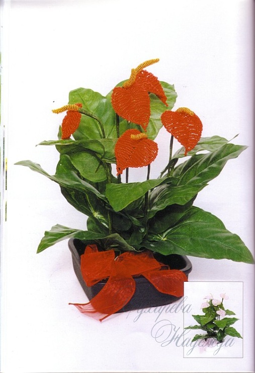Как плести цветок антуриум из бисера