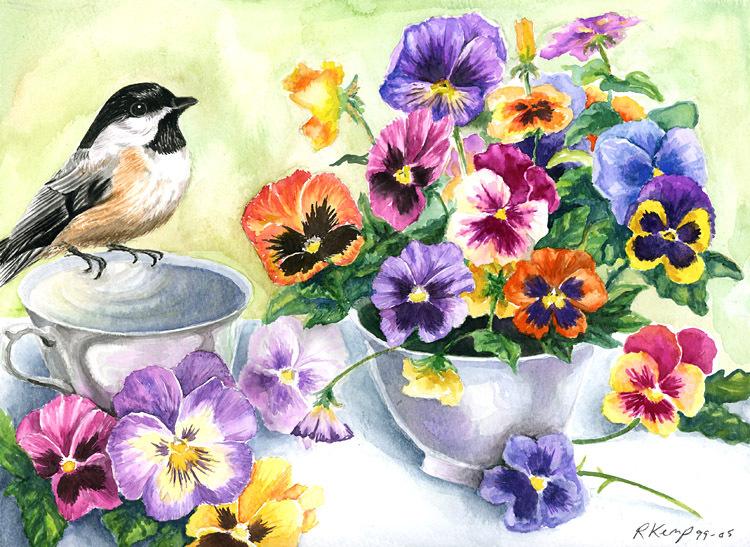 Цветы и букеты 101 фиалки анютины