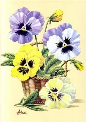 Gallery.ru / Фото #103 - Цветы и букеты 101 (фиалки, анютины глазки) - shennon.