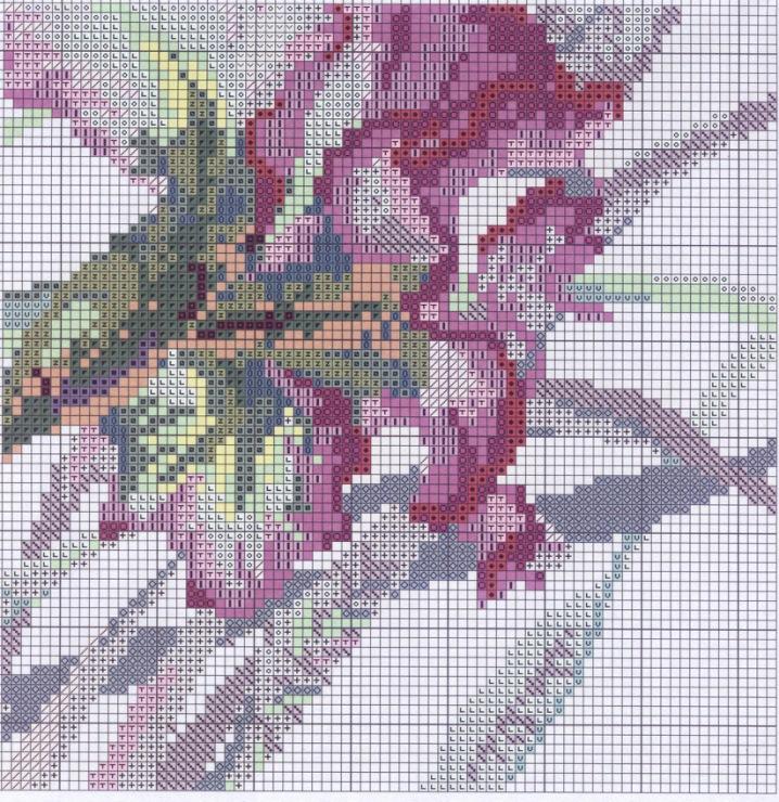 Скачать схема вышивка riolis - вышивка крестом бесплатные сх.