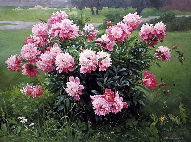 Плейкаст ландыши значение цветов